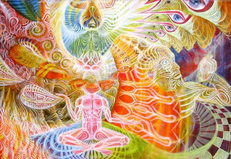 DMT, The Vine of the Soul and the Ayahuasca Experience